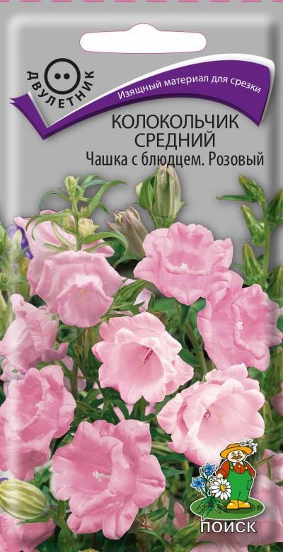 том колокольчик чашка с блюдцем фото цветов еще можно